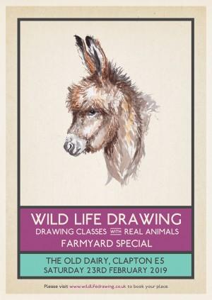 Wild Life Drawing: Farmyard Special