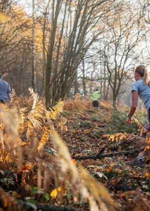 TRIBE Run Free: Hampstead Heath Trail Run