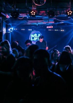 Wild Life W/ DJ Odin & Midnight Riot