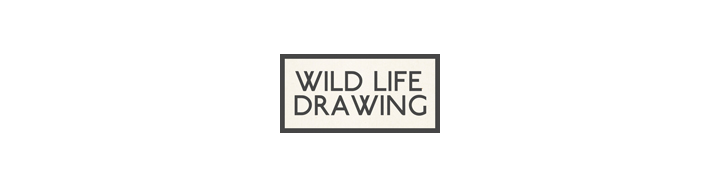 Wild Life Drawing