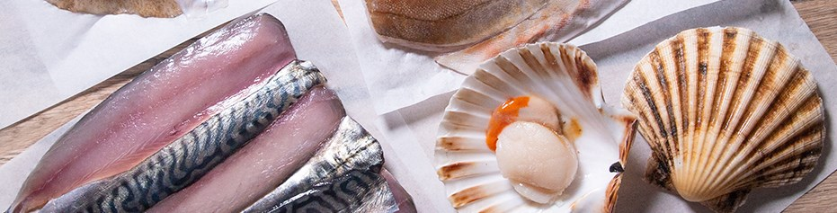 Sustainable wild fish caught on day boats and delivered fresh daily from St Ives, Cornwall.