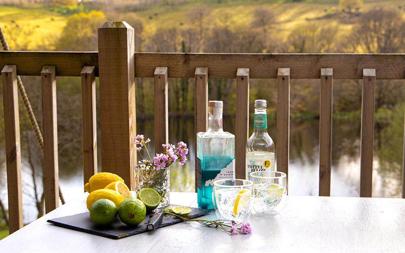 Gin cocktail recipes, organic gin and tonic, gin delivery