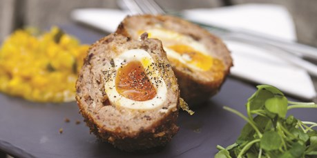 Organic Eggs - Scotch Eggs Recipe