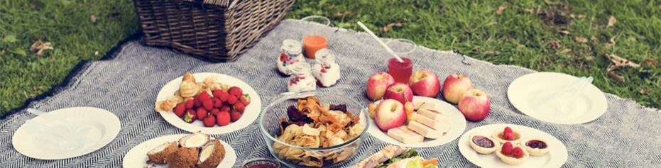Organic Picnic - Cheese, Charcuterie and Fresh Bread