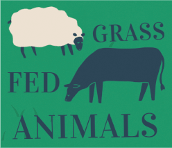 Grass Fed Animals