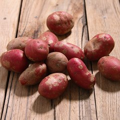 Red Potatoes | Red Potatoes