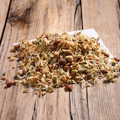 Mixed Sprouted Seeds