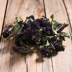 Purple Sprouting Broccoli | Organic Vegetables