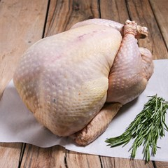 Bronze Turkey, Frozen | Organic Poultry