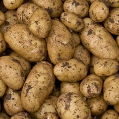 White Potatoes 1kg