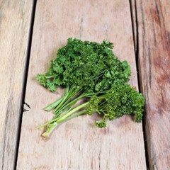 Curly Parsley | Organic Herbs