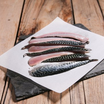 Wild Mackerel