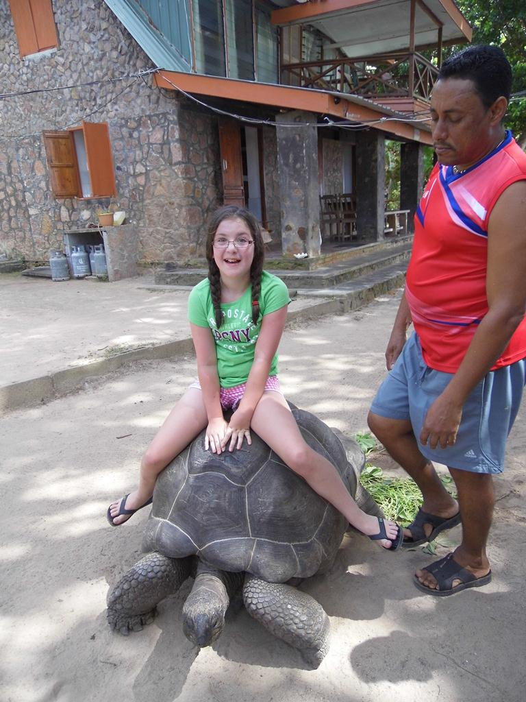 You can live life at a tortoise's pace on the Seychelles