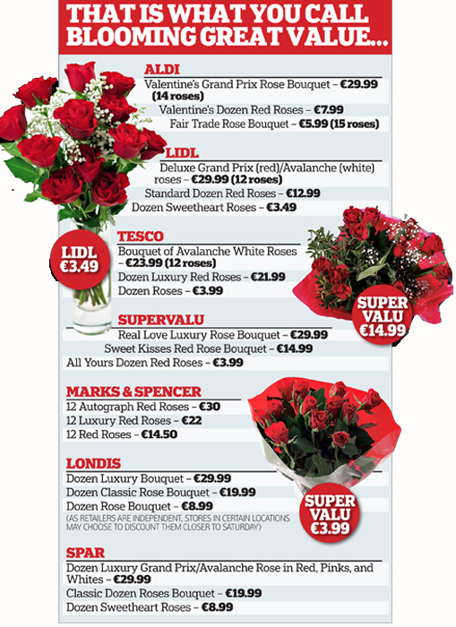 What are some good places to shop for roses?