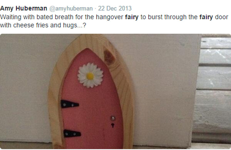 Irish fairy council helps pals evicted from wood for Amazon uk fairy doors