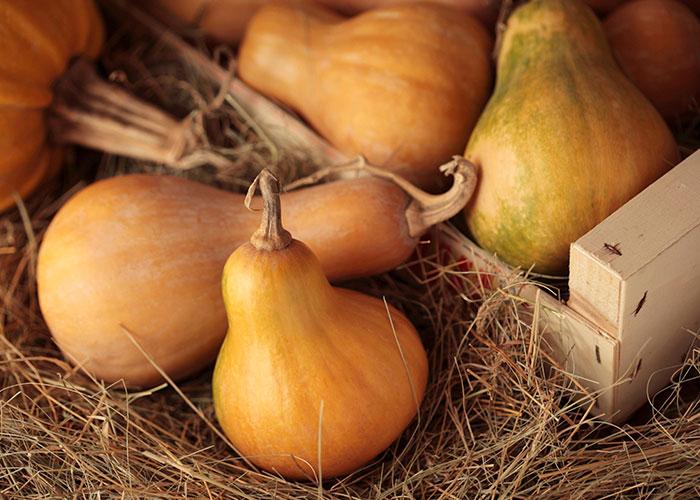 Top FIVE Everyday Superfoods Orange Root Vegetables