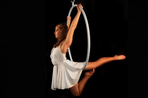 Elegance Aerial Hoop