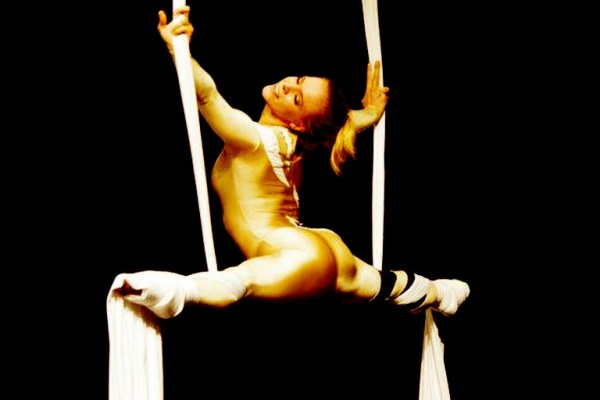 Golden Aerial Silks