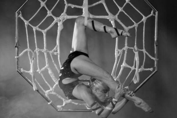 Spider Web Aerial Hoop