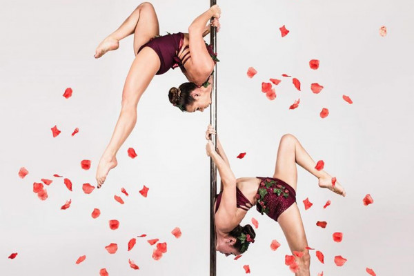 Rose Petals Pole Duet