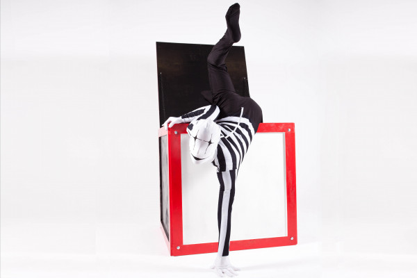 Toy Box Contortion