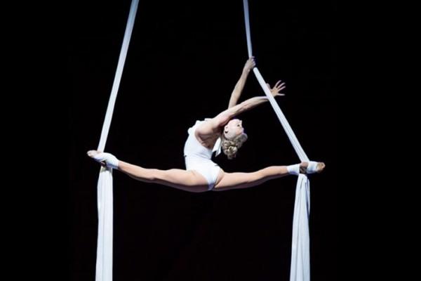 Elegant Aerial Silks