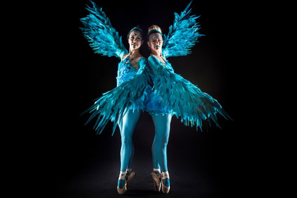 Blue Bird Ballerinas