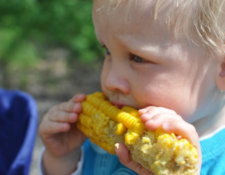 Barnyard Kingdom Opening Sweet Corn Roast