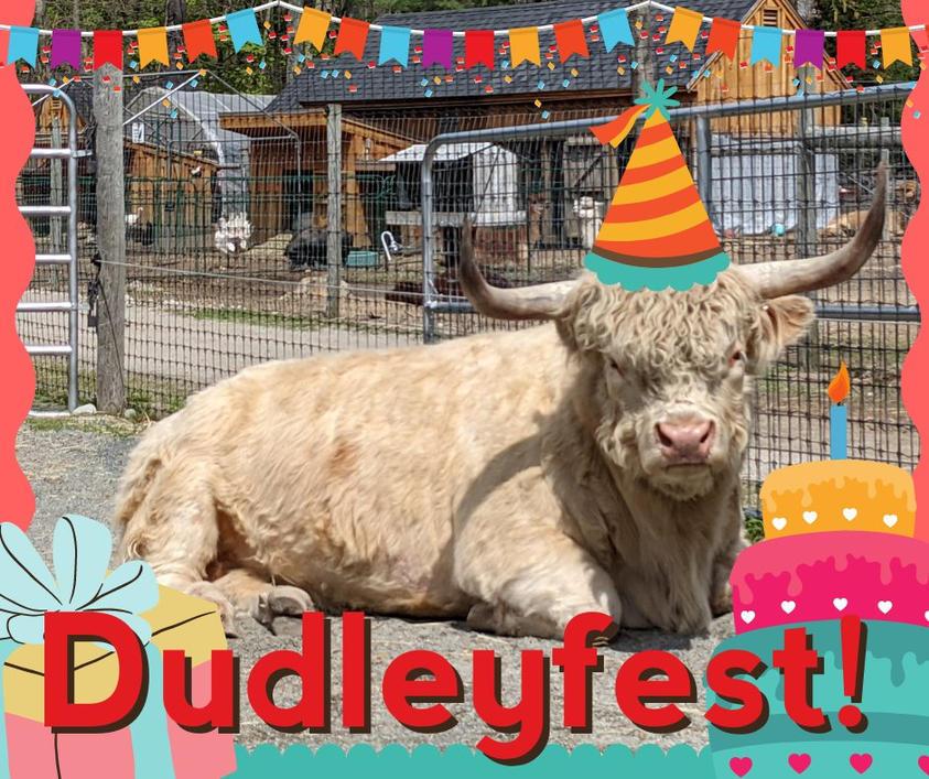 DudleyFest 2021