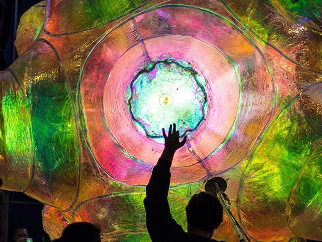 Festival of Light, Sound, and Digital Culture