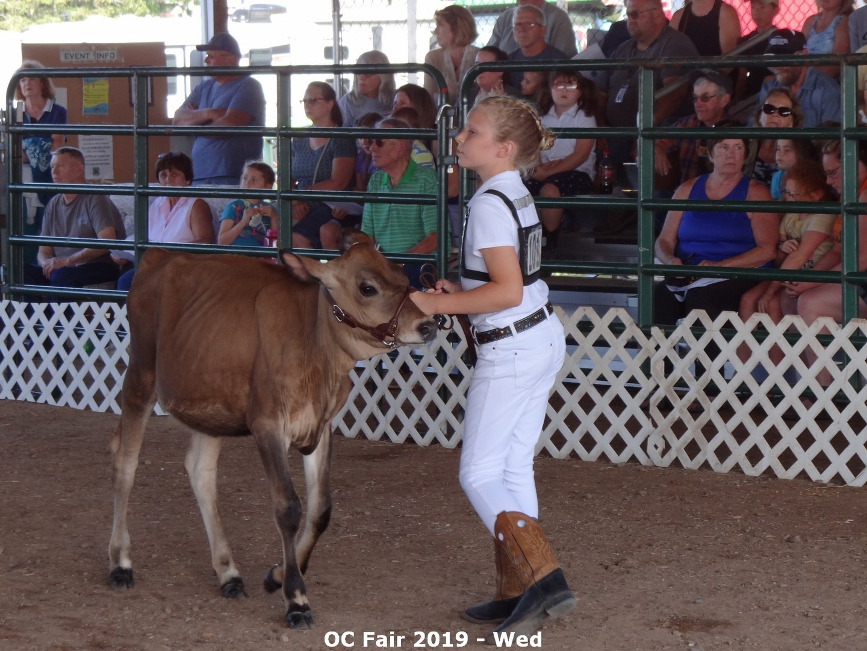 Orleans County 4-H Fair