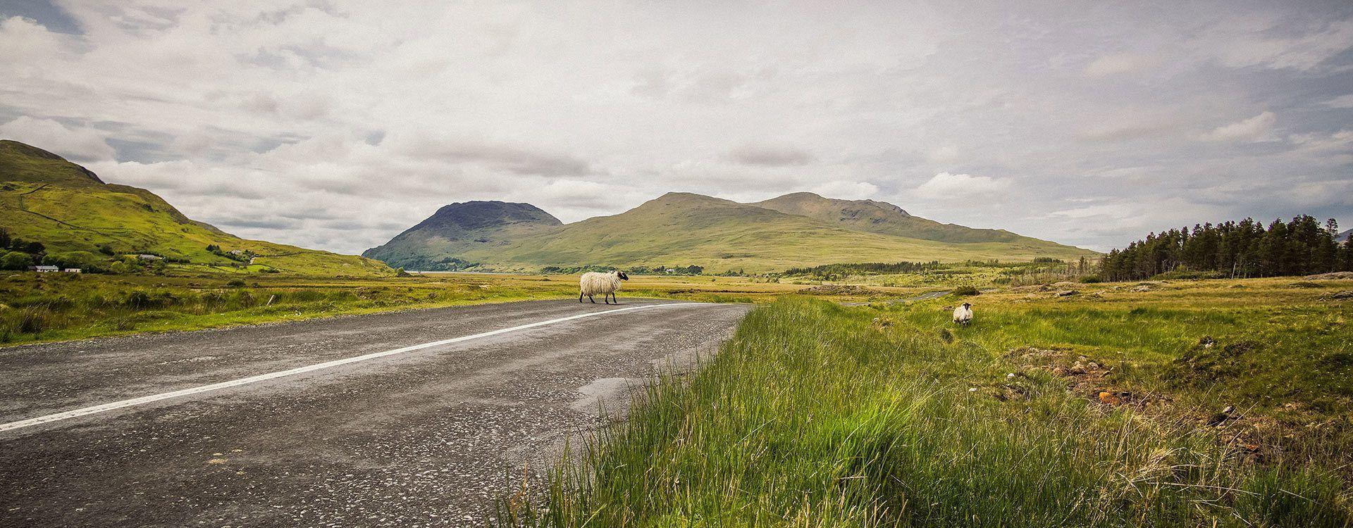 Excursión de cuatro días al oeste (Galway, Acantilados de Moher, Kerry, Dingle, Blarney) desde Dublín