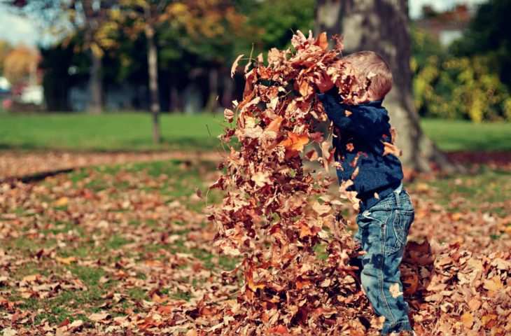 boy plays with leaves