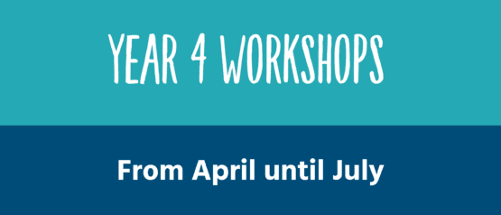 11 Plus workshops