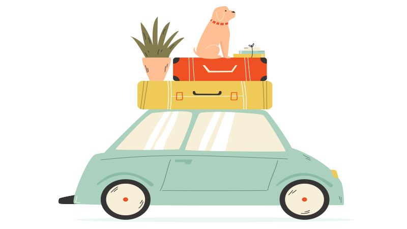 Illustration of a car with luggage and a dog.