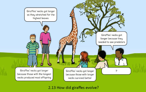Image of a concept cartoon in which children share their view and observations about how giraffes have evolved