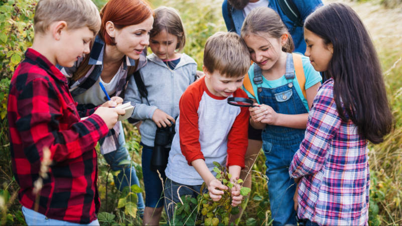 a group of young nature detectives exploring a hedgerow