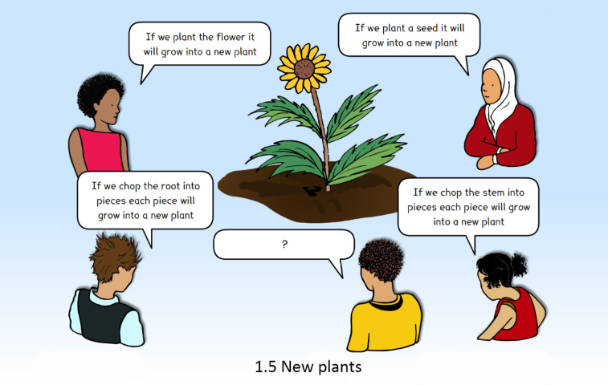 Image of a concept cartoon in which children share their observations about how to grow new plants