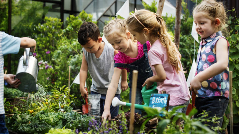 children exploring and watering plants