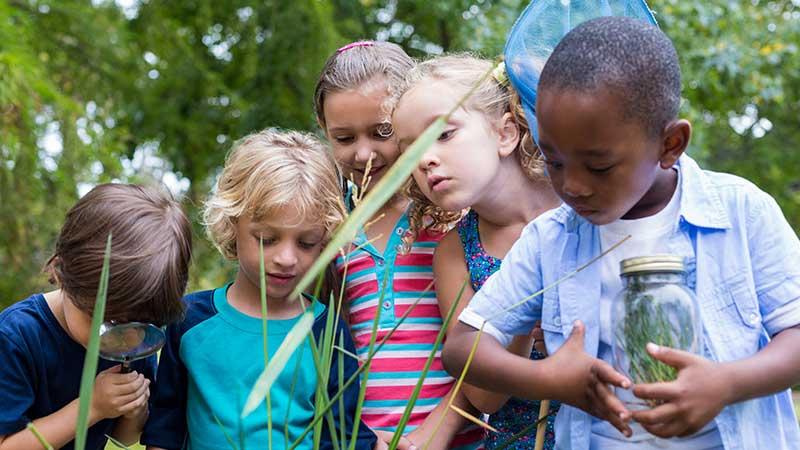 Children learning outdoors, pre lockdown.