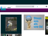Website Belgium digital