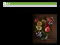 <p>Op deze site vind u een handig overzicht van (enkele) surrealisten die op Exto.nl een site onderhouden.</p>