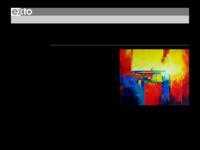 'Het vrij schilderen in een abstracte stijl heeft de voorkeur. Als materiaal wordt olieverf op doek gebruikt met zeer kontrastrijke kleuren en een duidelijke structuur. Dynamiek, kleur, expressie en 'last but not least' licht'.  zie ook: www.wvanderheijden.nl