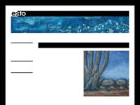 website met kleurige (materie-)schilderijen van mijn partner in atelier CaRie