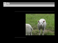 informatie over christel Van Raemdonck