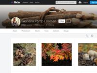 mijn foto's op de internationale fotosite www.flickr.com