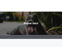 Uitgebreide site over alles wat met honden te maken heeft.