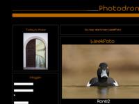 een leuk en gezellig forum waar je foto's kunt plaatsen en laten beoordelen, waar je heel veel van leert......