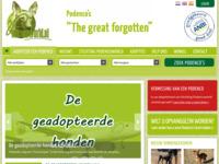 Een non profit stichting die de vergeten Podenco honden in Spanje helpen om een beter leven te krijgen.