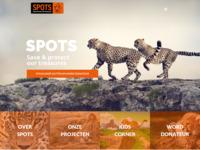 Stichting SPOTS zet zich in voor wilde katachtigen. En dit is hard nodig, dieren zoals de leeuw en de cheetah worden met uitsterven bedreigd.